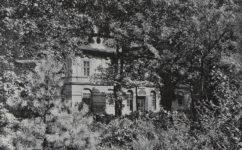 - Český svět 05.02.1909