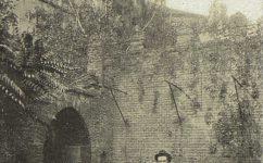 - Český svět 5.10.1904.