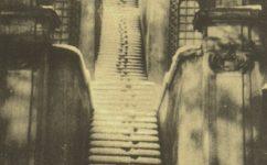 zahrada - Český svět 14.03.1929