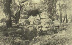 - Český svět 25.11.1920