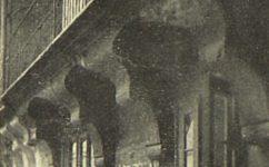 pavlač - Český svět 27.1.1905