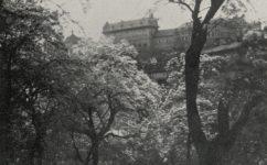 zahrada - Světozor 30.04.1915