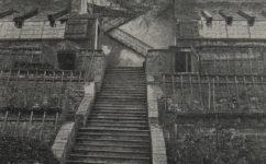 schodiště v zahradě. -