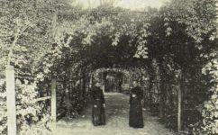 - Český svět 1.9.1905