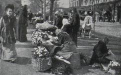 dušičky - Český svět 11.11.1910