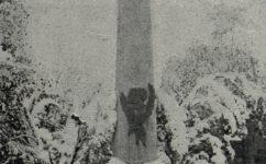 Hrob Tyrše a Fugnera - Český svět 14.11.1919