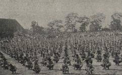 cvičení sokola - Český svět 24.06.1920