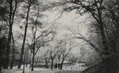 - Světozor 06.03.1914