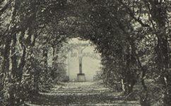 Klášterní zahrada - Český svět 09.08.1912