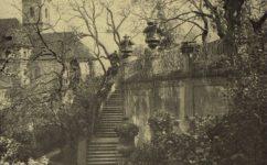 zahrada - Světozor 07.06.1916