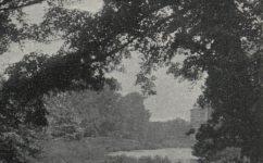 u primátorského ostrova k zasypání - Český svět 03.07.1906