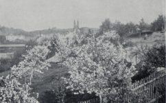 - Český svět 08.05.1914