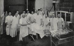 lazaret - Světozor 30.10.1914