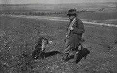 psí soutěž - Český svět 23.9.1910
