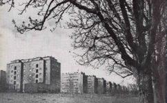 třída Pionýru 1960 - Praha očima staletí (1960)